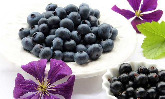 Blueberries and Purple Flowers
