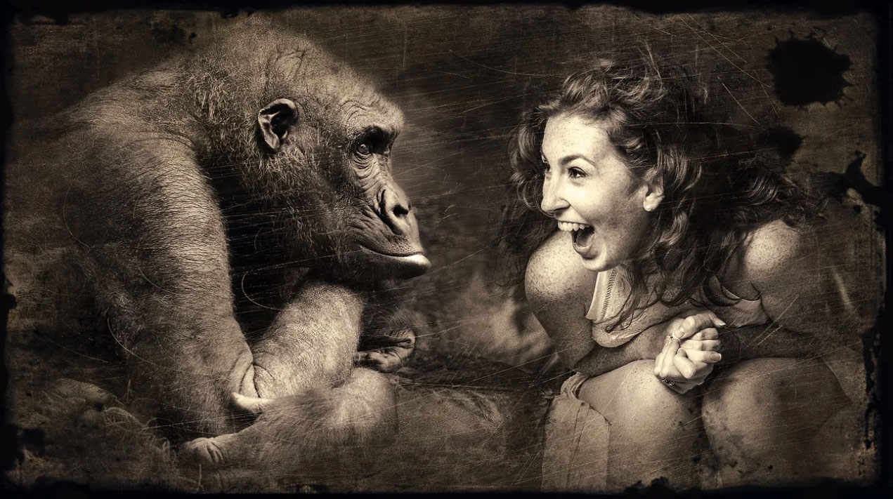 Woman joking with gorilla and laughing