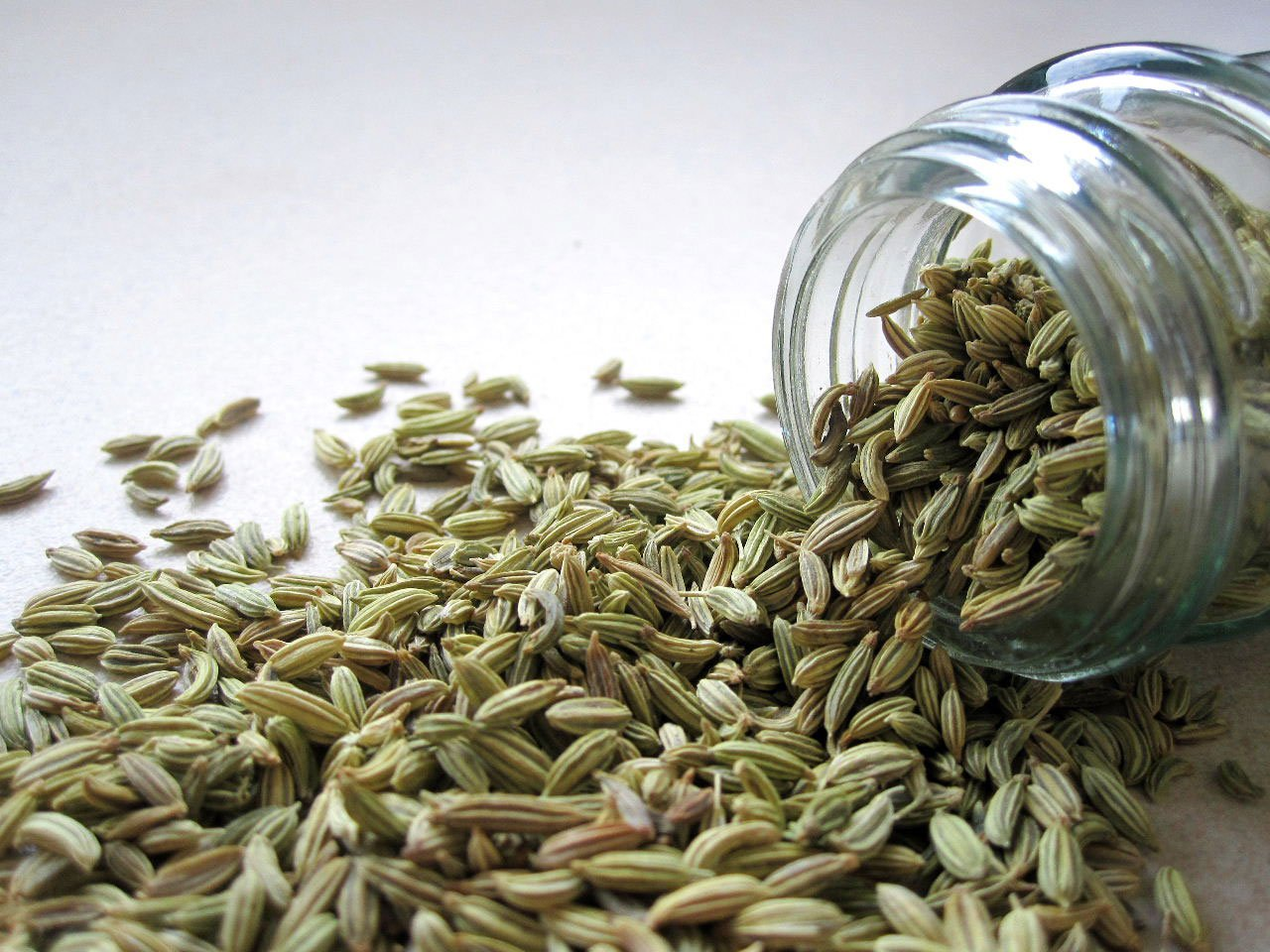 Fennel Herbs Help with Breastfeeding